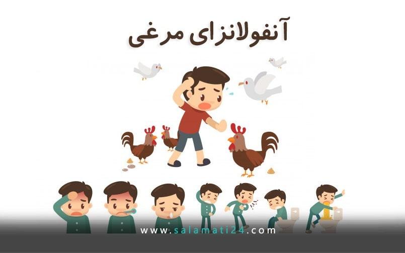 آنفولانزای پرندگان (آنفولانزای مرغی)